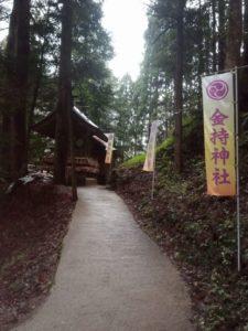 金持神社の参道の写真